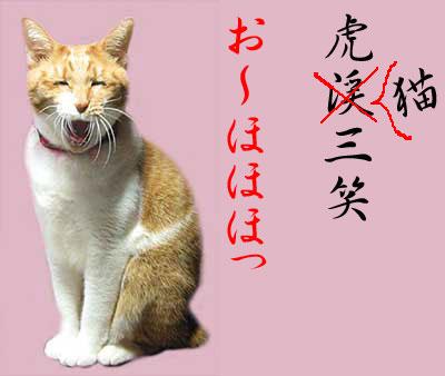 笑っている猫