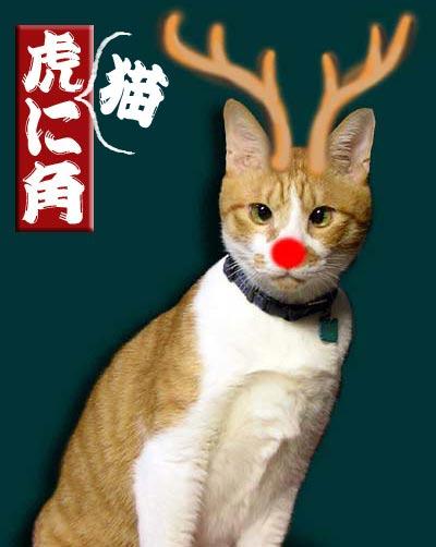 角を生やして鼻が赤い猫