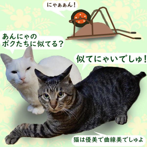 猫車(一輪車)