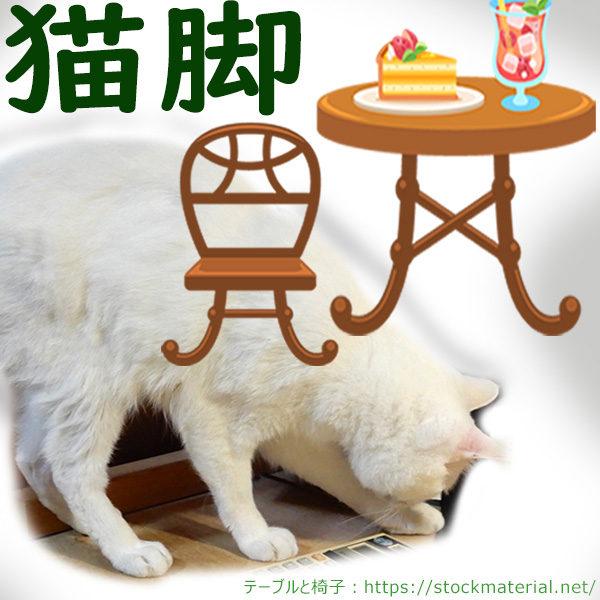 猫脚の椅子・テーブルと本物の猫